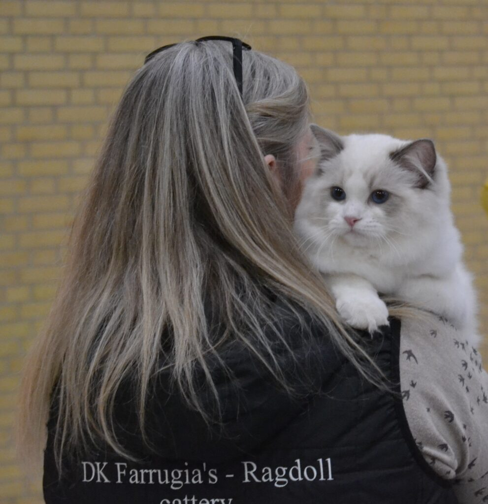 https://farrugia.dk/wp-content/uploads/2021/01/DSC_0487-991x1024.jpg